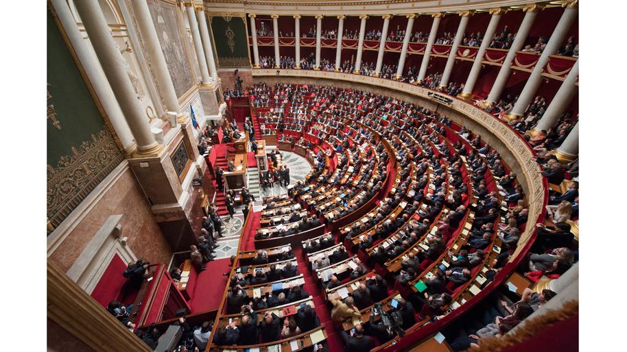Fiche De Synthese La Seance Pleniere Role Et Pouvoirs De L